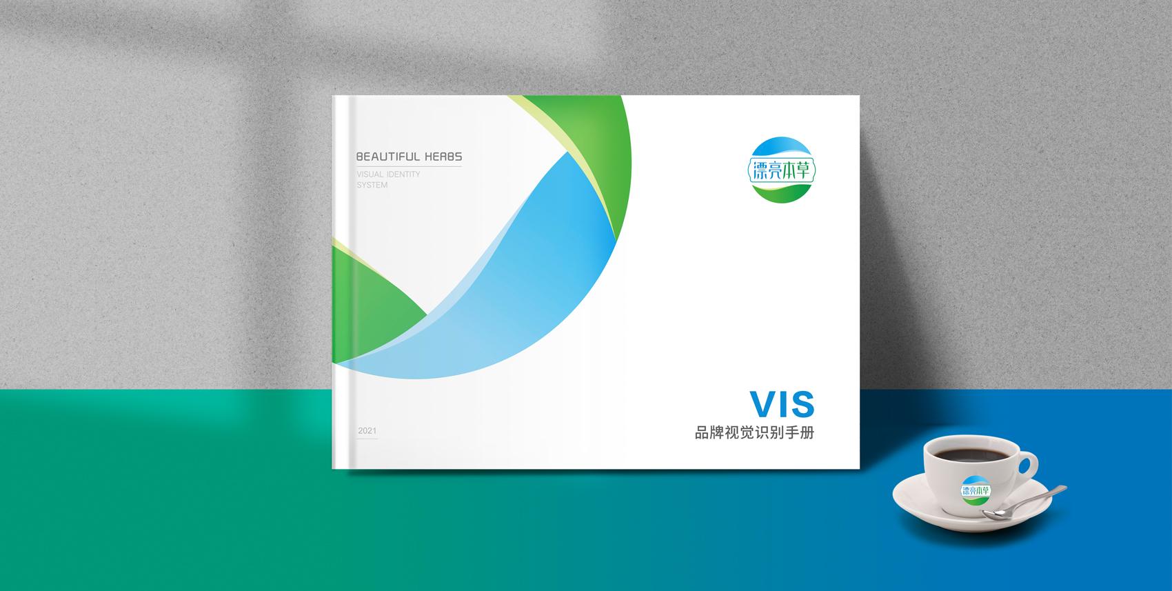VI视觉手册设计制作